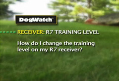 How do I change the training level on my R7 receiver?